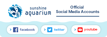 Sunshine Aquarium's Official Social Media Accounts